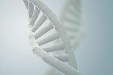 全基因合成