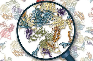 蛋白质组学研究中常用的网站和数据库