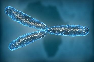 长链非编码RNA及环状RNA常用数据库