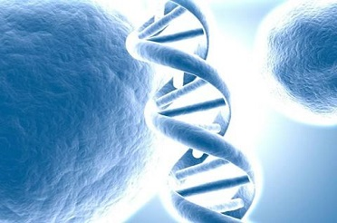 核酸序列与基因组数据库