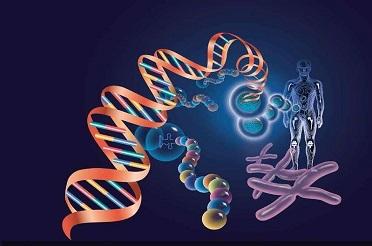 microRNA数据库及研究软件