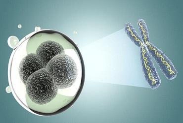 单细胞测序(sc RNA-seq)