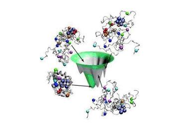 蛋白质胶条鉴定
